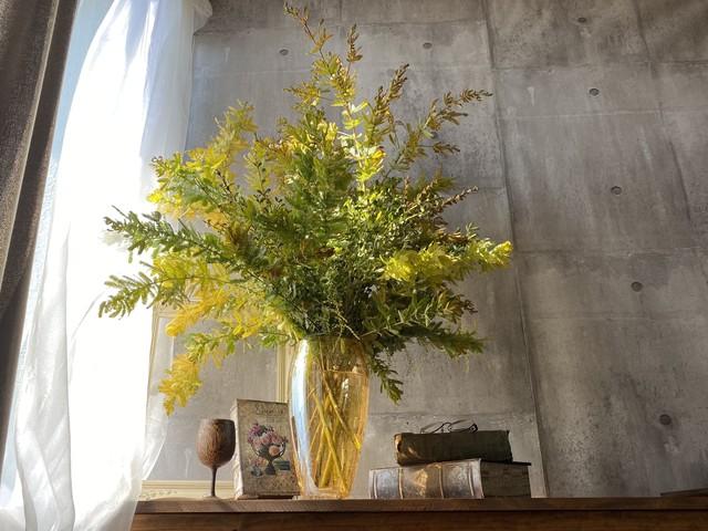 《定期便》季節の枝物セット 隔週プラン