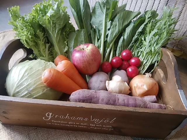 フィールの無農薬野菜定期宅配セット 週1回お届け 3回分