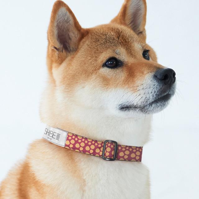 COLLAR PAW DOT【MAROON】犬用首輪