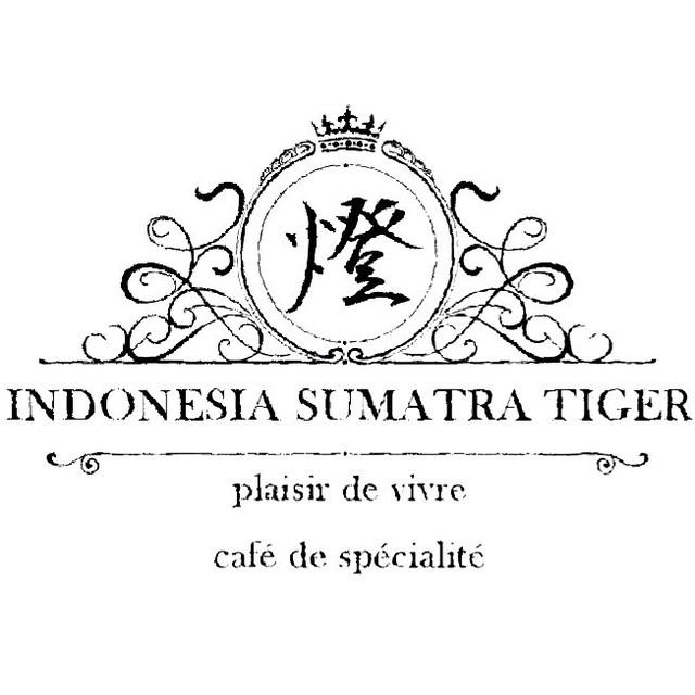 インドネシア スマトラタイガー
