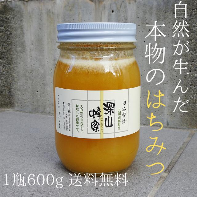 【送料無料】純粋生はちみつ 非加熱 非加工 日本蜜蜂 | ハチミツで免疫力UP!