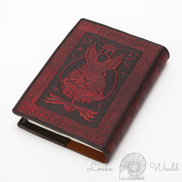 Book cover Rabbit
