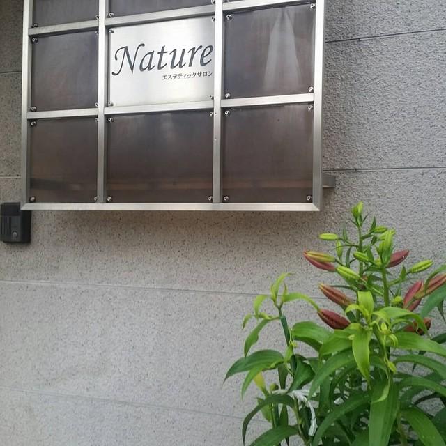 kyotonature