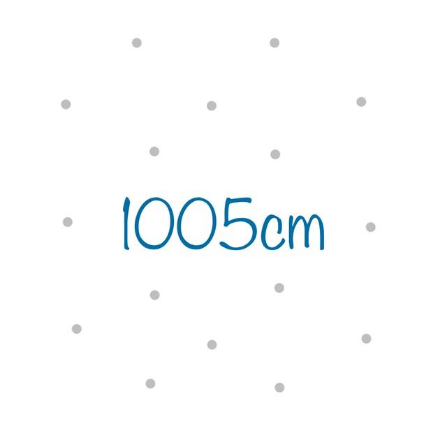 1005cm