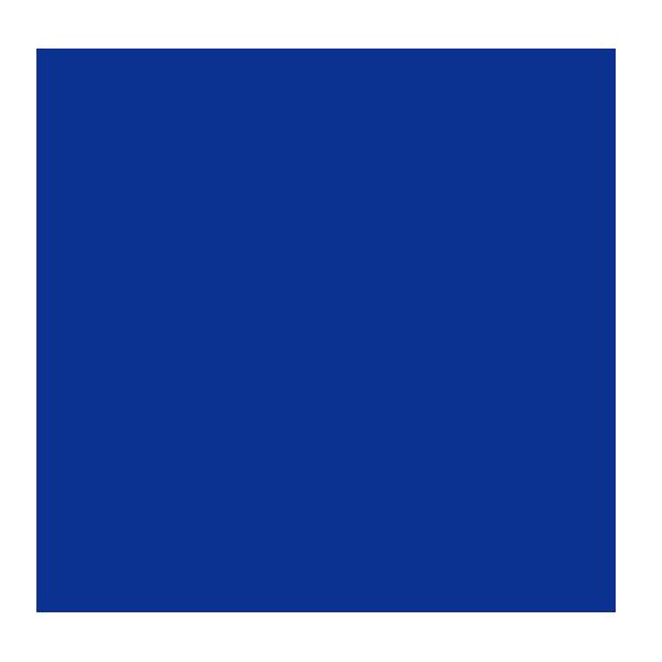 Sophia Shiny  | ~ Institut des couleurs ~