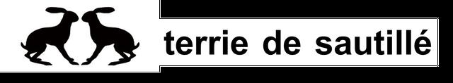 terrier de sautillé(テリエドソティエ)