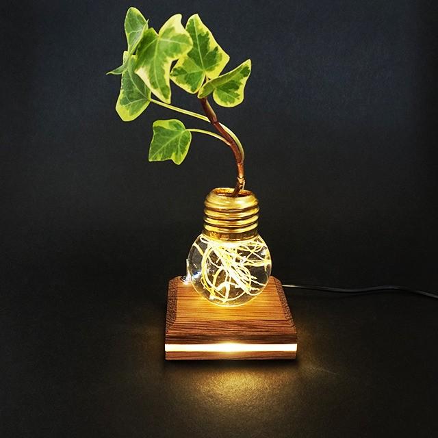 役割を終えた電球を再利用した、植物の根を幻想的に照らす花器「re'light(リライト)」が美しい