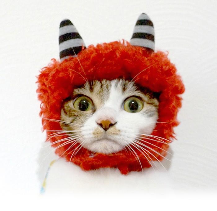 ワンちゃん、猫ちゃんともいっしょに楽しみたい節分♡今年はとっても可愛い「鬼」になってもらいませんか?