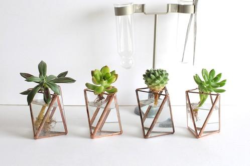 特徴的な立体でつくられる、植物×鉱物「ROUSSEAU / ルソー」のテラリウムがかわいい♡
