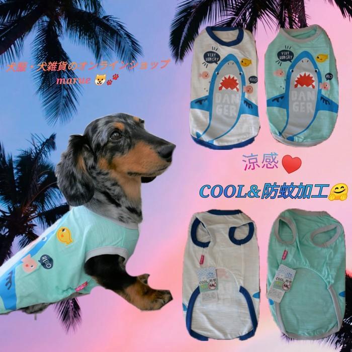 夏におすすめな犬服です✨