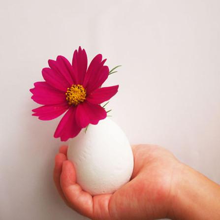 卵の殻を剥いたらセメント卵!? 殻をぴりぴり剥く感覚がたのしめるワークショップ。