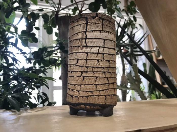 ダイナミックな土の表情が魅力!植物を引き立てる信楽焼の植木鉢