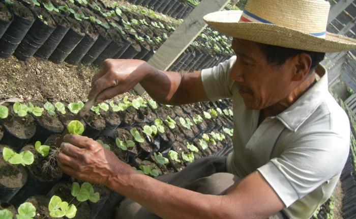 グァテマラ・レタナ農園からお届け。「ローストラボ・クレモナ」のコーヒーからエシカルを考える。