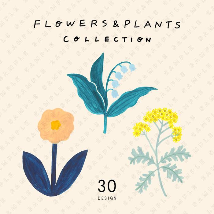 「花と植物の素材集 FLOWERS & PLANTS COLLECTION」が新登場!