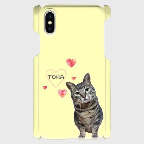 猫好き・トラ猫好きにはたまらない!「小首をかしげたとら」のiPhoneケース