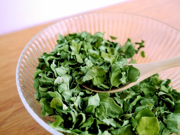 地球上で最も栄養価の高い植物「マルンガイ」
