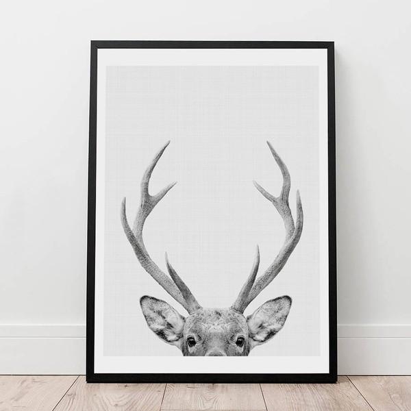ひょっこり顔を出した鹿のキャンバスアート✨
