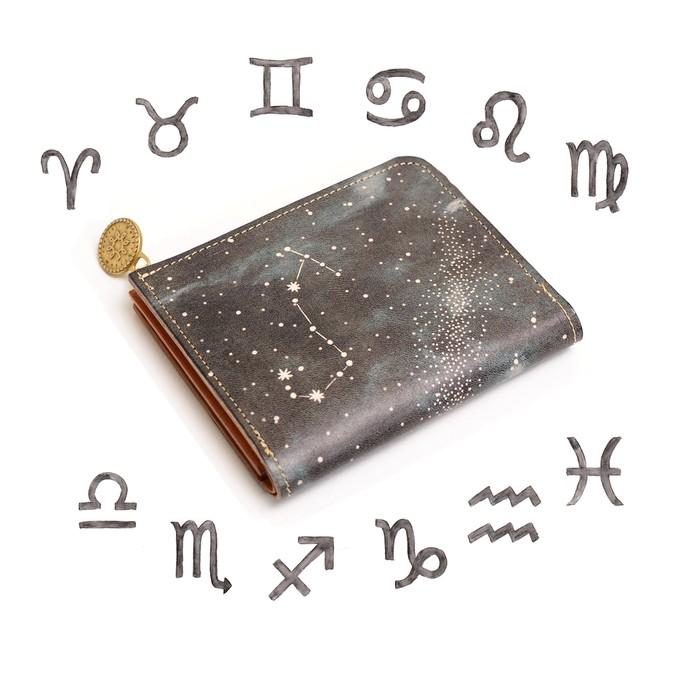 12星座が輝くお財布を作りました ☆彡