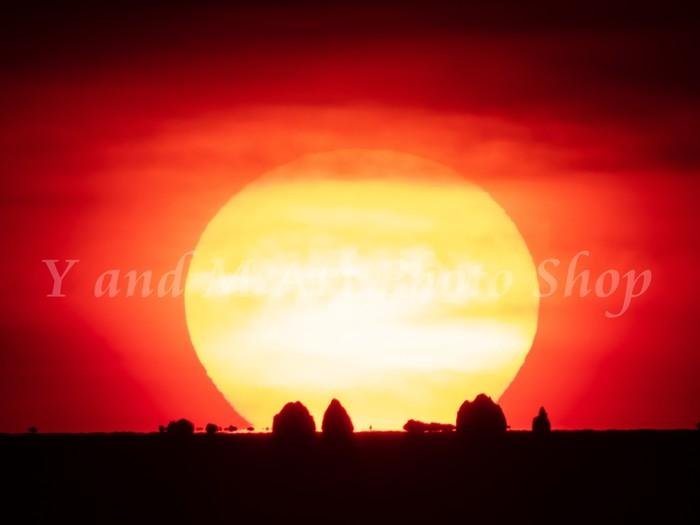 神秘的!自然あふれる「竜のすむ島 御積島」・「飛島」に沈む夕日💛ロマンチックなフォトカードが完成!