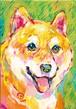 [139]柴犬