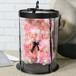 ローズベア ミニ マーブル ライトピンク お祝い 誕生日 周年