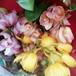 超特大シンビジュームの花束