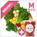 【初回お試し】朝採れ野菜(M)10~12種類のお野菜セット+ブランドトマトcoiina