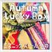 【布・ストール】2018 Autumn Lucky Box