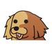 ゴールデンレトリバー(大)  犬ステッカー
