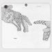 手帳型(帯なし)(iPhone8Plus/7Plus):kazue.M_013「手」