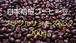 (送料無料)自家焙煎コーヒー豆 ブラジルサントスNo.2 200g/注文後焙煎