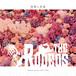 MINI ALBUM「祝祭と花束」