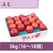 【りんご】ふじ 5kg(16〜18個)
