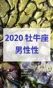 2020 牡牛座(4/19-5/19)【男性性エネルギー】