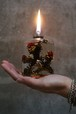 PLANTAHOLIC OIL LAMP -No.9-