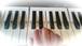 鍵盤シート