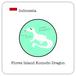 インドネシア フローレス コモドドラゴン / 100g