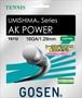 【テニスストリング】ゴーセン AKパワー(AK POWER)16