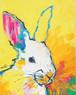 rabbit!