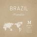 【250g】ブラジル/プラナウト農園/ナチュラル