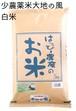 愛知県産 大地の風(白米)5kg×2袋【はっぴー米】