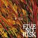 "[CD]FIVE NO RISK ""Kite"""