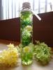 ハーバリウム ロングボトル 「グリーン・モーム」