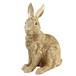 ウサギ貯金
