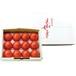 光樹とまと 小玉化粧箱×1箱