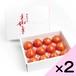 光樹とまと 小玉化粧箱×2箱