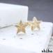 大人っぽい雰囲気の1つ星ピアス【star pierce(gd)】