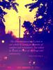 ポストカード『人の真価がわかるのは喜びに包まれている瞬間ではなく、試練や論争に立ち向かうときに示す態度である。』