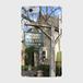 英国の美しい村 iPhone6/6sスマホケース