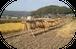 無農薬・天日干し米 にこまる 玄米3kg